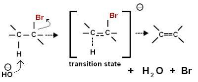 dehidrohalogenasi haloalkana