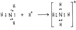 gambar ion amonium