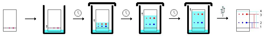 proses KLT kromatografi lapis tipis