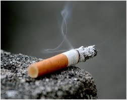 radikal bebas asap rokok