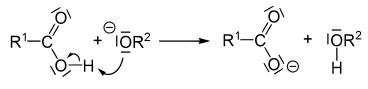 mekanisme hidrolisis ester