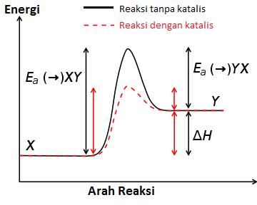 grafik katalisis energi aktivasi