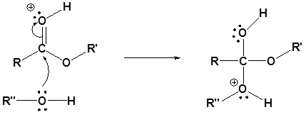 transesterifikasi katalis asam 2
