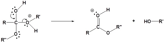 transesterifikasi katalis asam 4