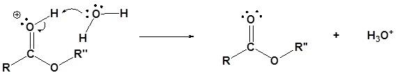 transesterifikasi katalis asam 5