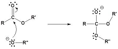 transesterifikasi katalis basa 1