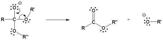 transesterifikasi katalis basa 2