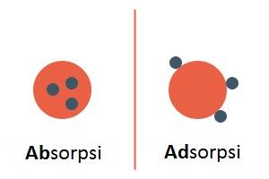 perbedaan adsorpsi dan absorpsi